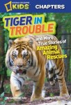 Tiger in Trouble